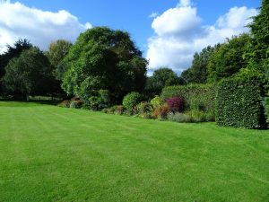 Liitle Ponton Hall Garden